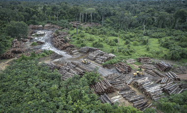 illegally deforested area in Brazil's Amazon Basin