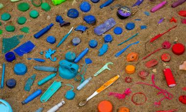 Assorted plastic collected during a spring community cleanup at the shoreline and harborfront of Hamilton, Ontario.