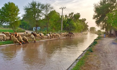 canal of small town Shah kot District Nankana Sahib in Punjab, Pakistan