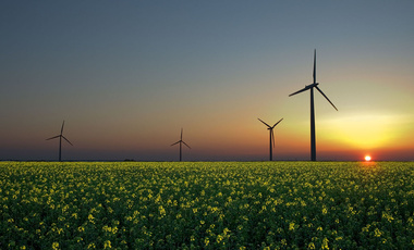 Wind turbines in a rapeseed field in Sandesneben, Germany