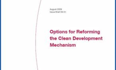 Options for Reforming the Clean Development Mechanism