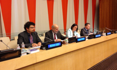 Managing the Atom's Martin Malin (second from left) speaks at the UN Symposium.