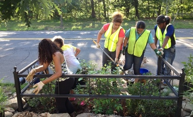 Common Ground students planting bioswale on West Park