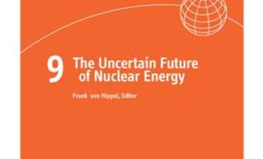The Uncertain Future of Nuclear Energy