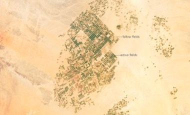The agricultural fields in active use (dark green) or fallow (brown to tan), are approximately 1 km in diameter. Much of the Saudi Arabia's Wadi As-Sirhan Basin shown here is sandy (light tan to brown surfaces).