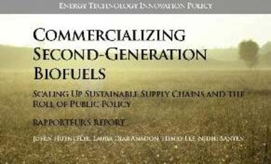 Commercializing Second-Generation Biofuels: Scaling Up Sustainable Supply Chains and the Role of Public Policy