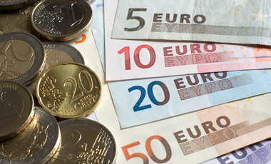 The Euro's First 20 Years