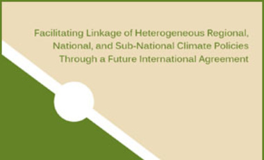 Facilitating Linkage of Heterogeneous Regional, National, and Sub-National Climate Policies Through a Future International Agreement
