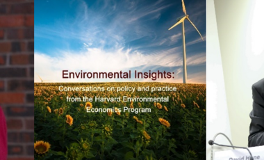 robert Stavins, Environmental insights logo, and David Hone