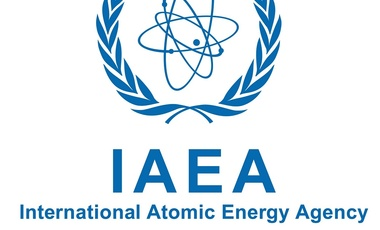 International Atomic Energy Agency Inspections in Perspective