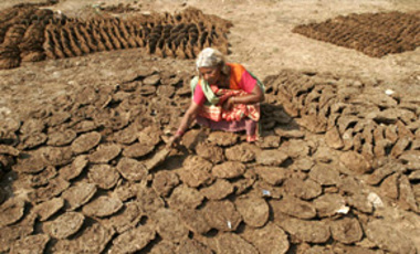An Indian woman dries cow dung cakes for use as cooking fuel in Phoolpur village, about 45 kilometers east of Allahabad, India, June 8, 2008.