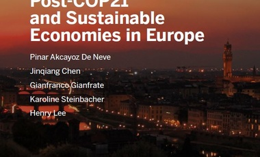 Climate Strategies Post-COP21 and Sustainable Economies in Europe