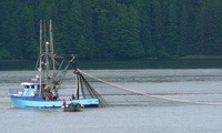 Commercial fishing vessel Cloud Nine near Sitka as seen from the Fairweather ferry