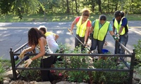 Common Ground Students Planting Bioswales on West Park