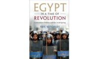 Egypt in a Time of Revolution, Neil Ketchley, 2017.