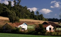 Typical farm in Caponema region, Parana State, Brazil