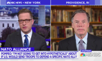 Former U.S. Ambassador to NATO Nick Burns Speaks to MSNBC's David Gura