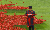 WWI Centenary Commemorated at the Tower of London in 2014 with 888,246 ceramic poppies